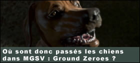 Dossier - O� sont donc pass�s les chiens dans Metal Gear Solid V Ground Zeroes ?
