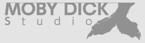Moby Dick Stdio - The Phantom Pain